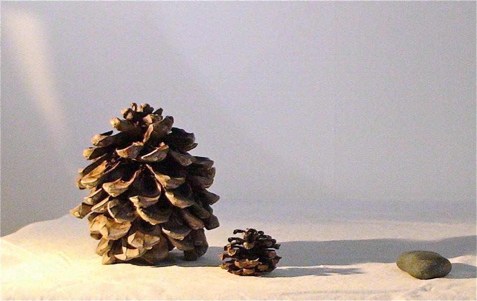 Cones and Stone